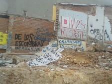 El conflicto de Ofelia Nieto 29